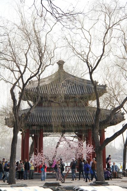 1Beijing (329)