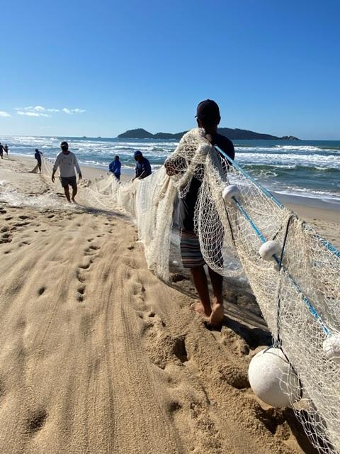 Pesca da Tainha Campeche